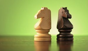 two chess pieces, a light and a dark wood knight facing opposite directions